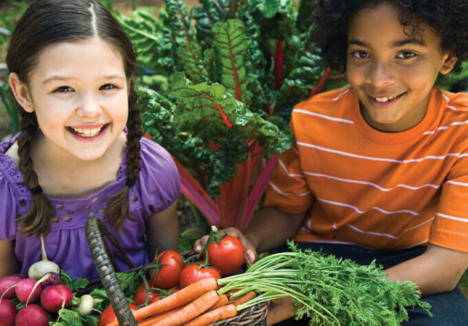 Registered Dietitians' Top Healthy Eating Tips for Spring and Summer